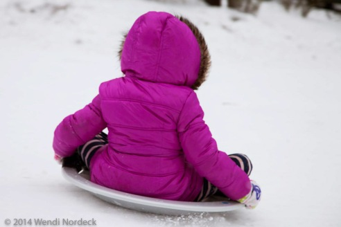 Sledding in Portland from http://ww.roux44.com